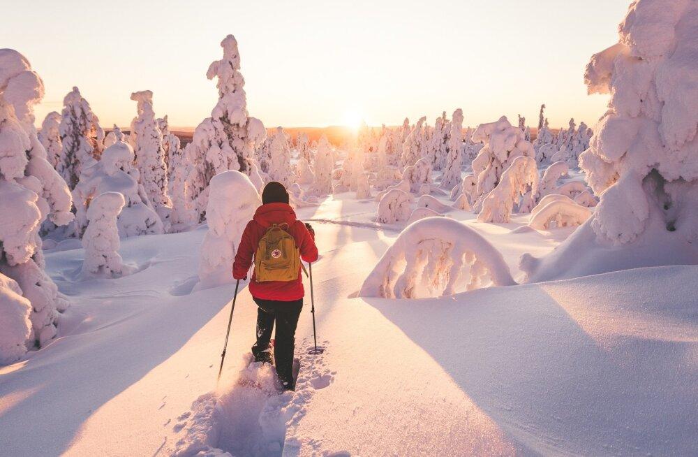 В Лапландии наблюдается рекордное количество снега на Рождество