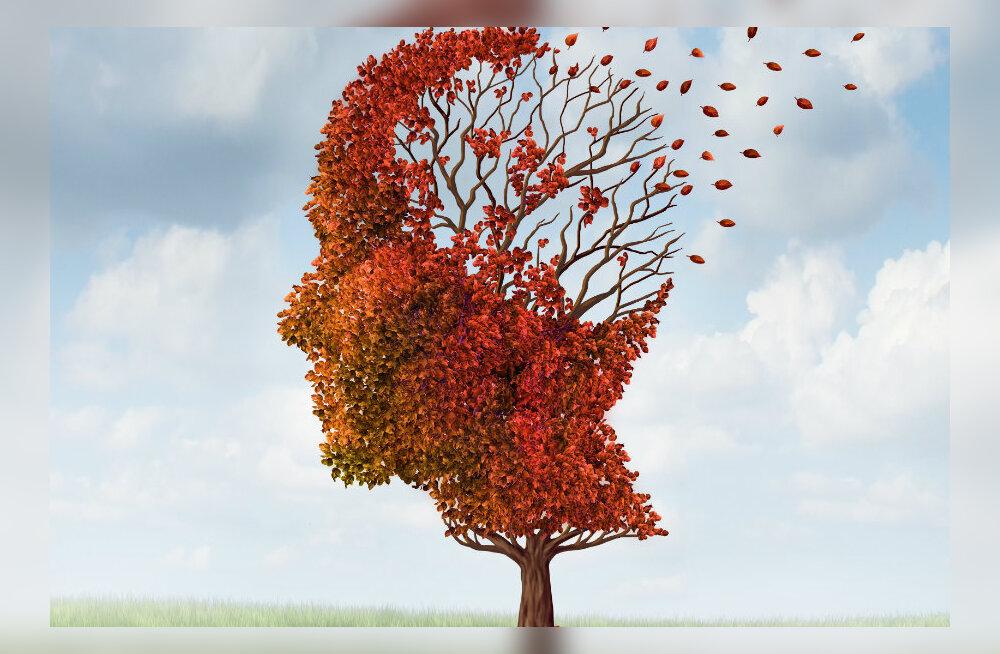 Alkeemia lugemisnurk. Energiakriis. Arst seletab, kuidas muretsemine ja stress kahjustavad meie arenguks ülitähtsat mälu ning tervist
