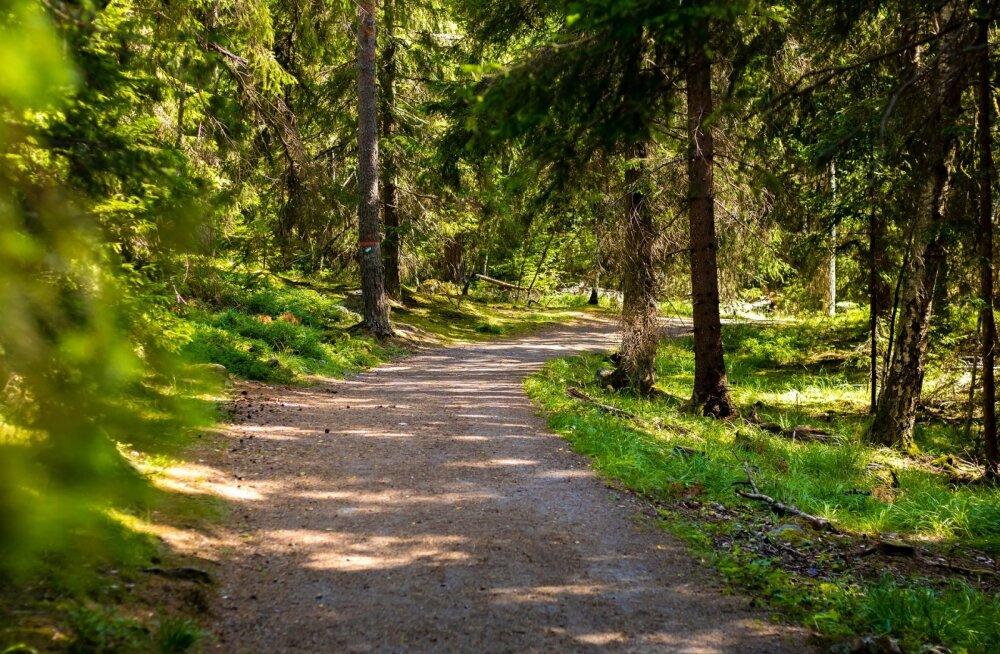 TOP 5 puhkekeskused Eestis   Kuhu tasub sõita pidama seminari või uhket pulmapidu