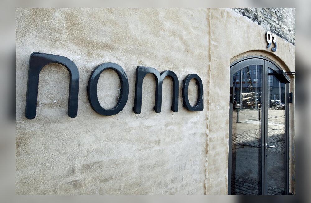 Sammal, sipelgad, röstsaiaga merisiilik: maailma parimas restoranis Noma saab söönuks 214 euro* eest