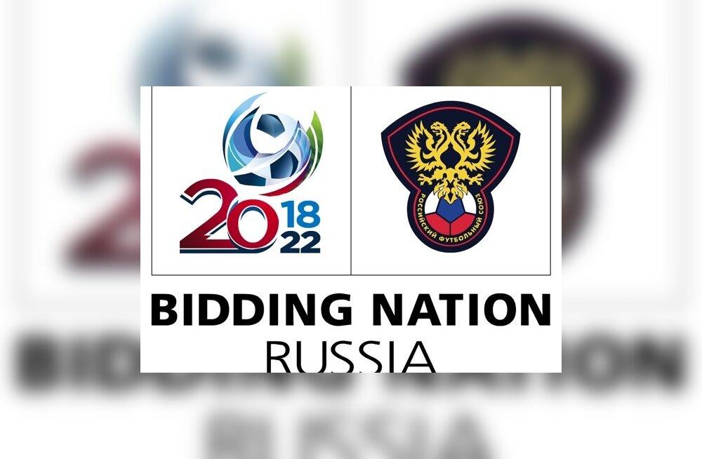Екатеринбург, Саранск и Подольск могут лишить чемпионата мира по футболу