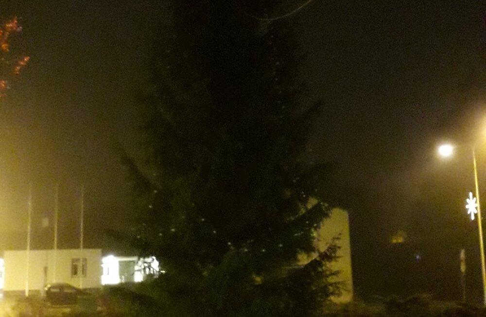 Viiratsi jõulupuu tuled ei sära.