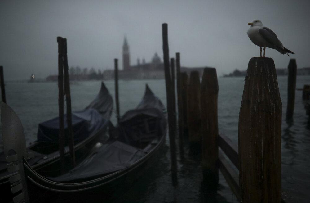 FOTOD | Kuidas koroonahirm uhkest Veneetsiast kummituslinna tegi