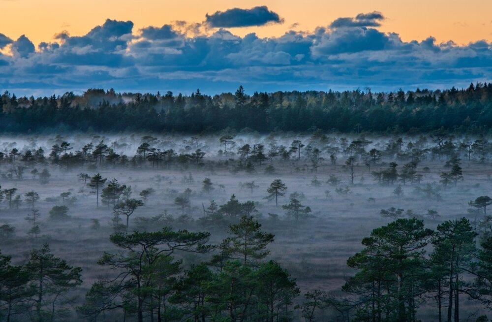 Потрясающее видео | Мы живем в раю: невероятные виды Эстонии, которые понравятся любому туристу