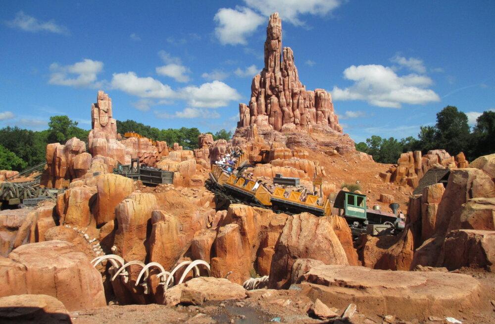 Lustides neerukividest priiks: Disney Worldi raudteel avastati üllatav ravitoime