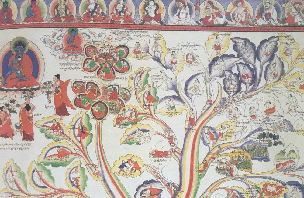 Tiibeti meditsiini mütoloogia ja suhe lääne meditsiiniga