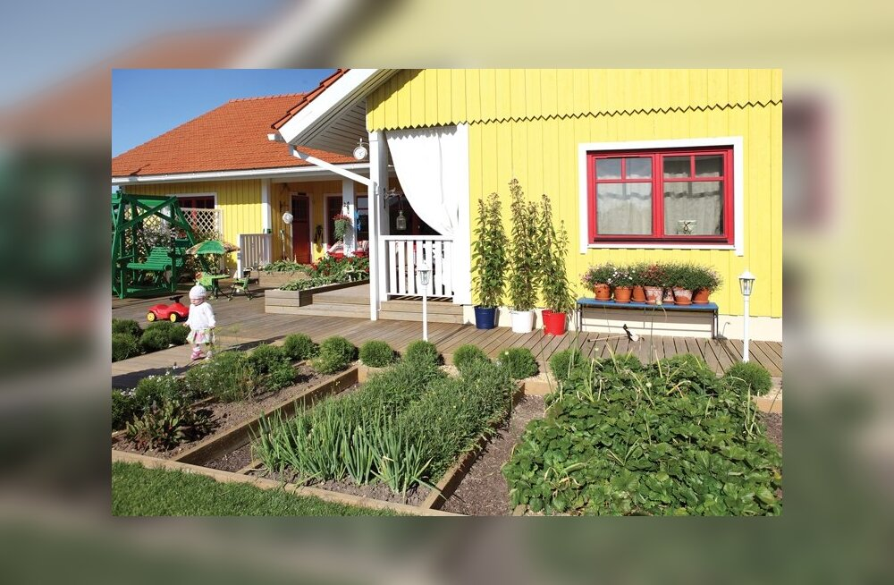 FOTOD: Kaunim aed ja kodu valitud