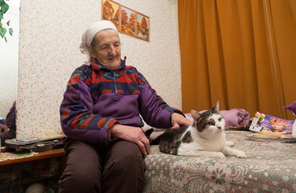 Hiiri sööb, aga vorsti ei võta suu sissegi — hiirekütt Silvia elu maal on lausa puhkus