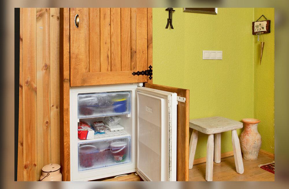 Andeka perenaise värvikas köök
