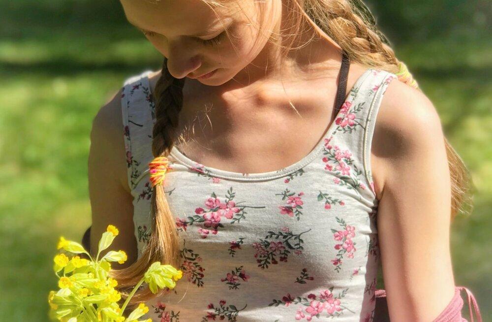Veel jõuad: Eesti otsib nurmenukke