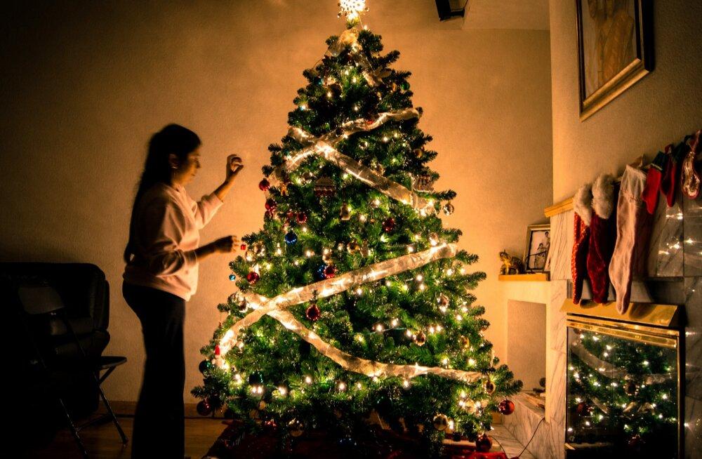 Feng Shui ekspert Siret Seeder õpetab: kuhu panna kodus jõulukuusk, kui tahad pühadeks peresuhteid parandada ja raha ligi meelitada