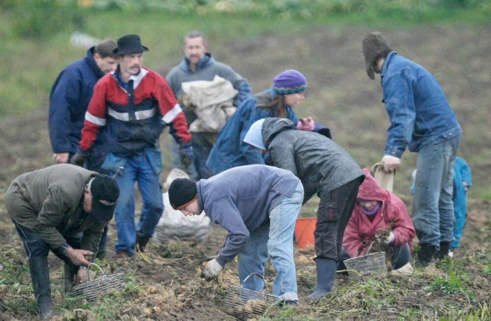 Riigikogu uuring: Eesti maapiirkondade ettevõtete ärimudelid ammenduvad peagi