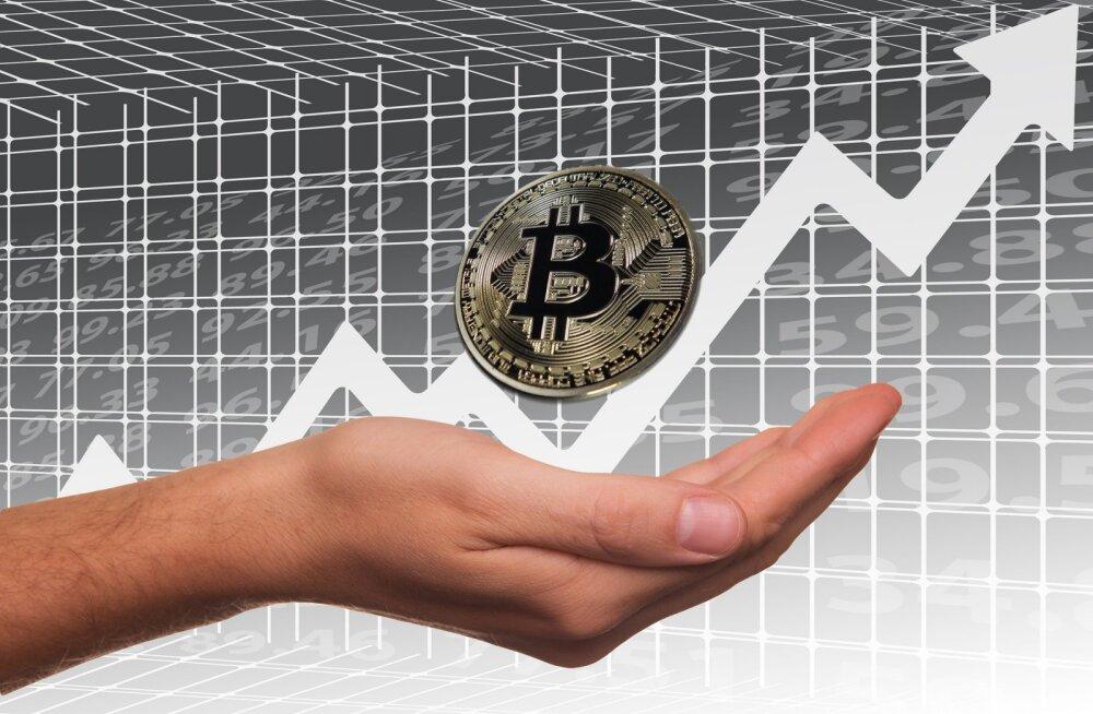 Kas aprillinali võis olla Bitcoini suure hinnatõusu põhjuseks?