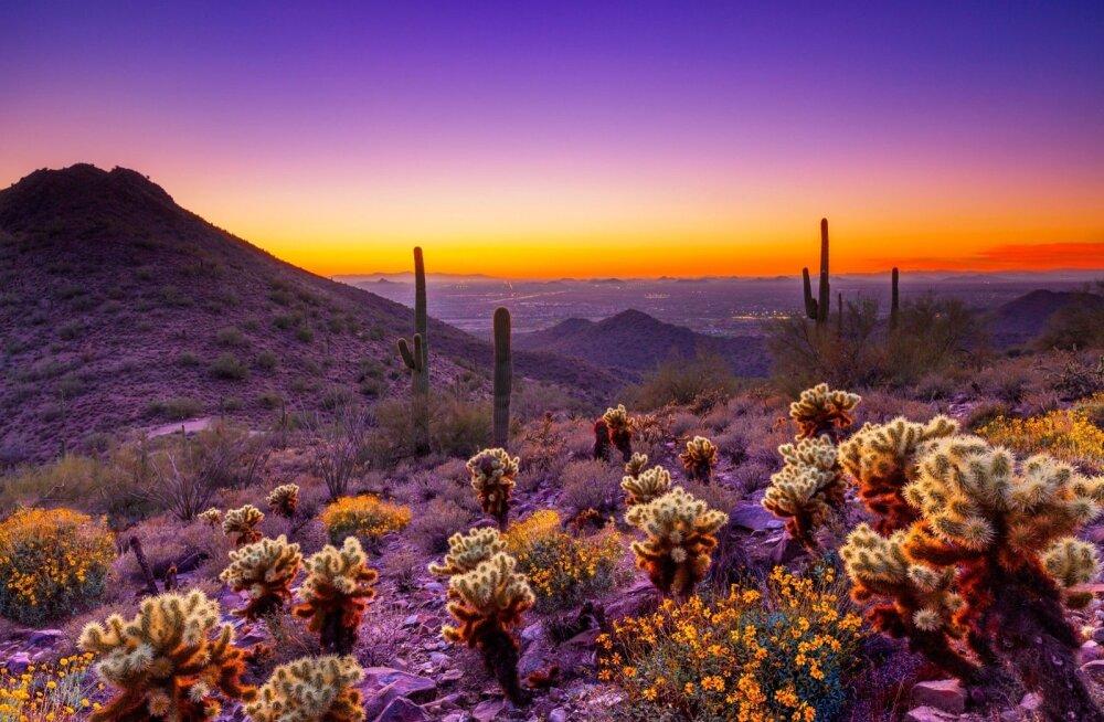 Scottsdale, USA