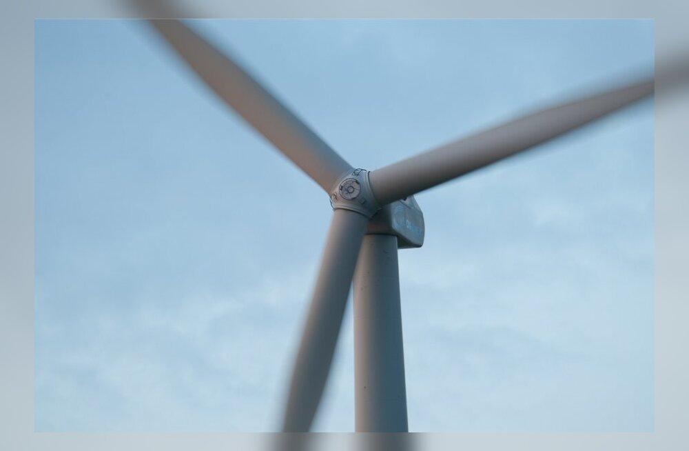 Saaremaa läänerannikule plaanitakse saja tuulikuga meretuuleparki