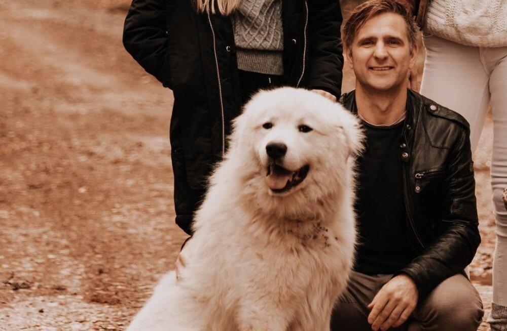 FOTO | Kas olete näinud? Anni ja Tomi Rahula imearmas koer läks kaduma!