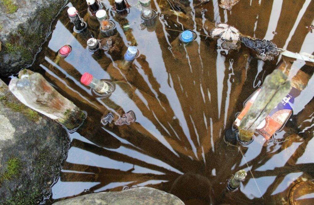 Salajõe reostunud vesi