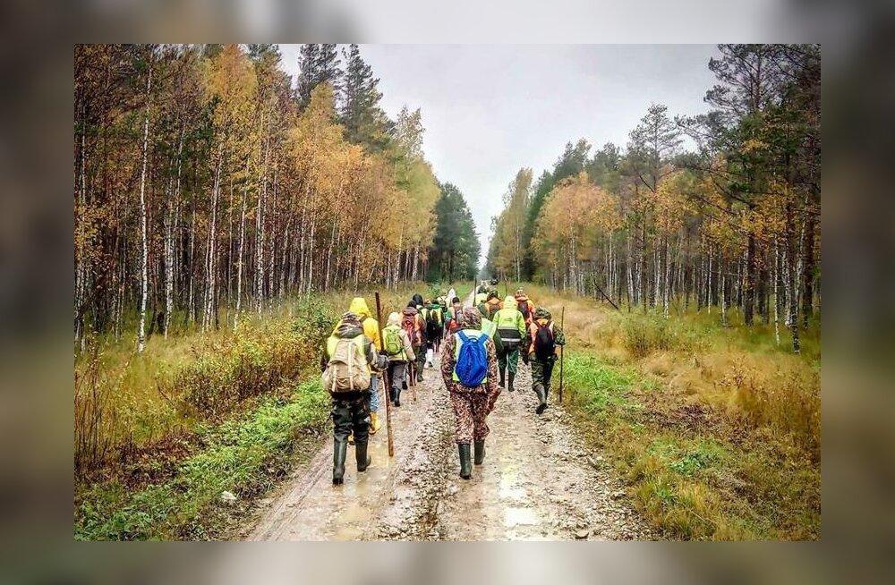 Сависаар просит Ратаса посодействовать продолжению поисков пропавшего в лесах Ида-Вирумаа 26 сентября 77-летнего Ивана Федоровича