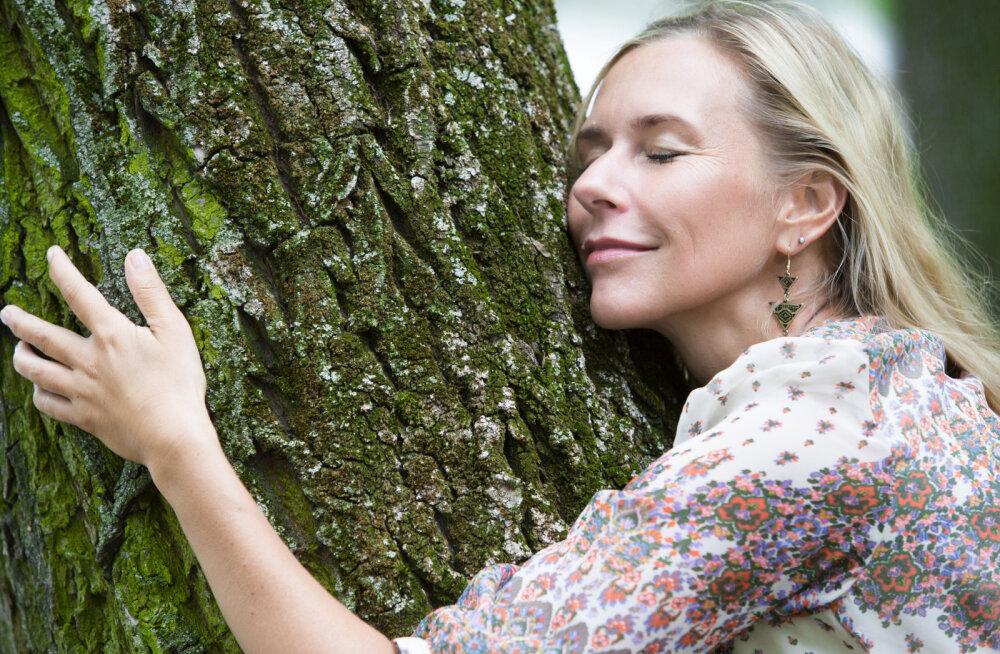 Puude võlujõud: millised puud annavad ja millised võtavad energiat?