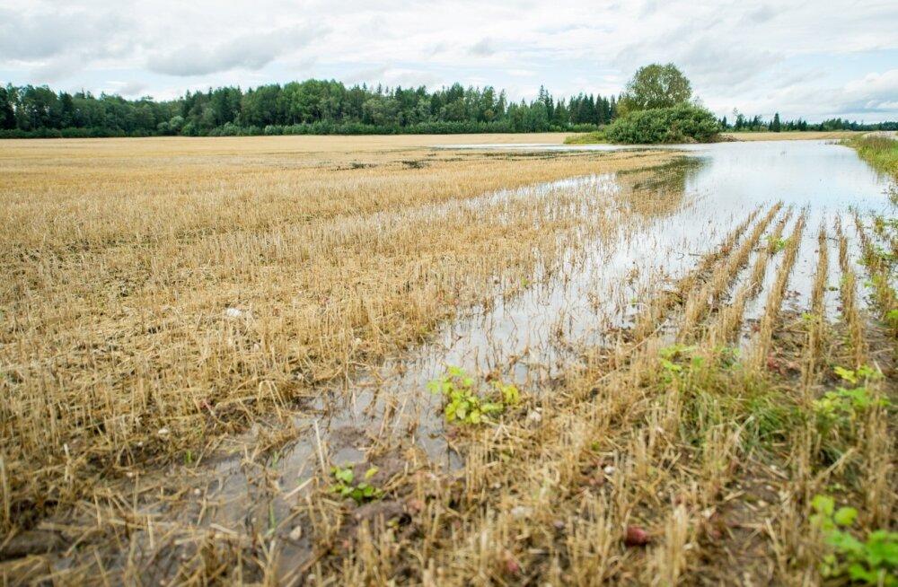 Põllud on vee all