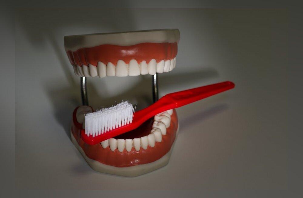 30 nõuannet spetsialistidelt, kuidas oma suu ja hammaste eest õigesti hoolitseda
