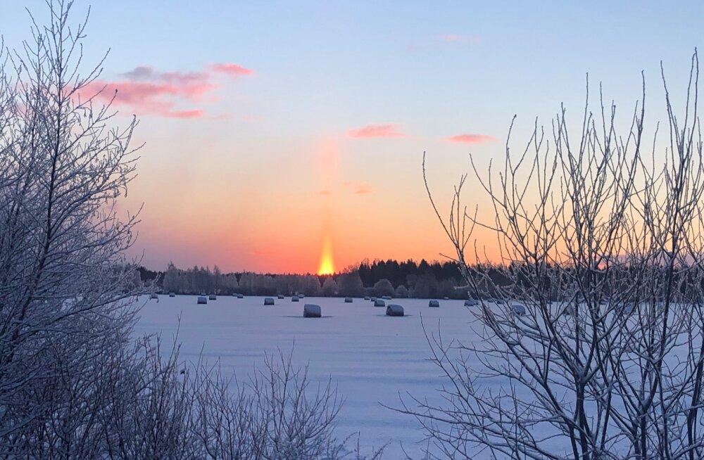LUGEJATE FOTOD | Napp talvine päikesevalgus pakub ilusaid vaatepilte