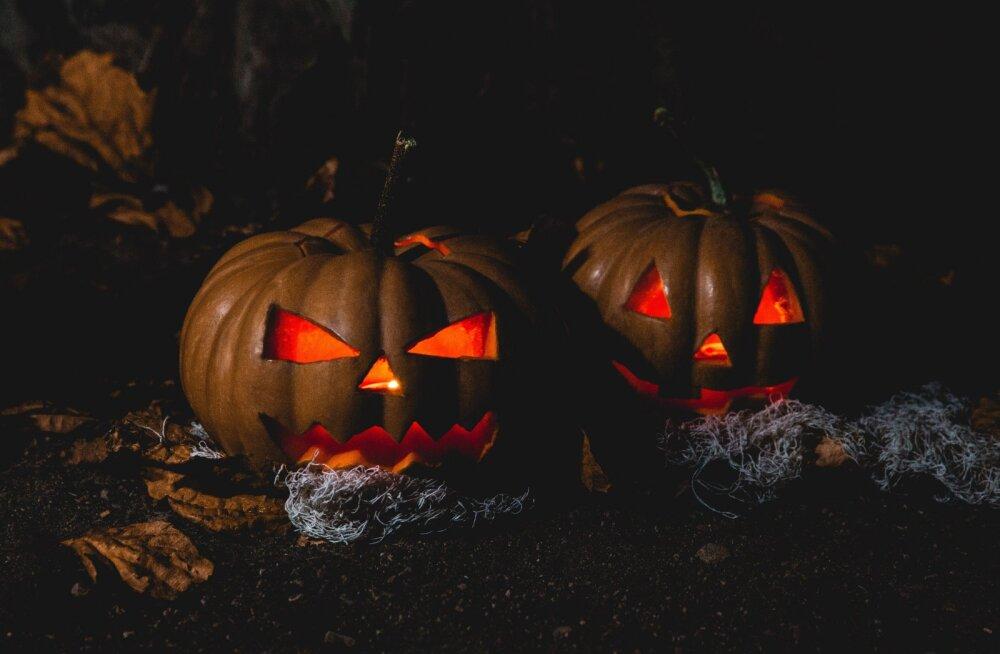 Куда пойти на Хэллоуин с ребенком? 7 вечеринок и мастер-классов в Таллинне