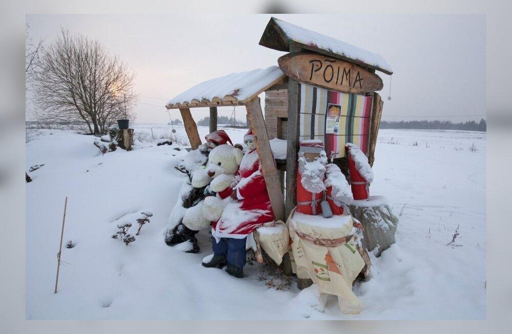 ФОТО: Как старая эстонская будка для приема молока стала популярным местом для фотографирования