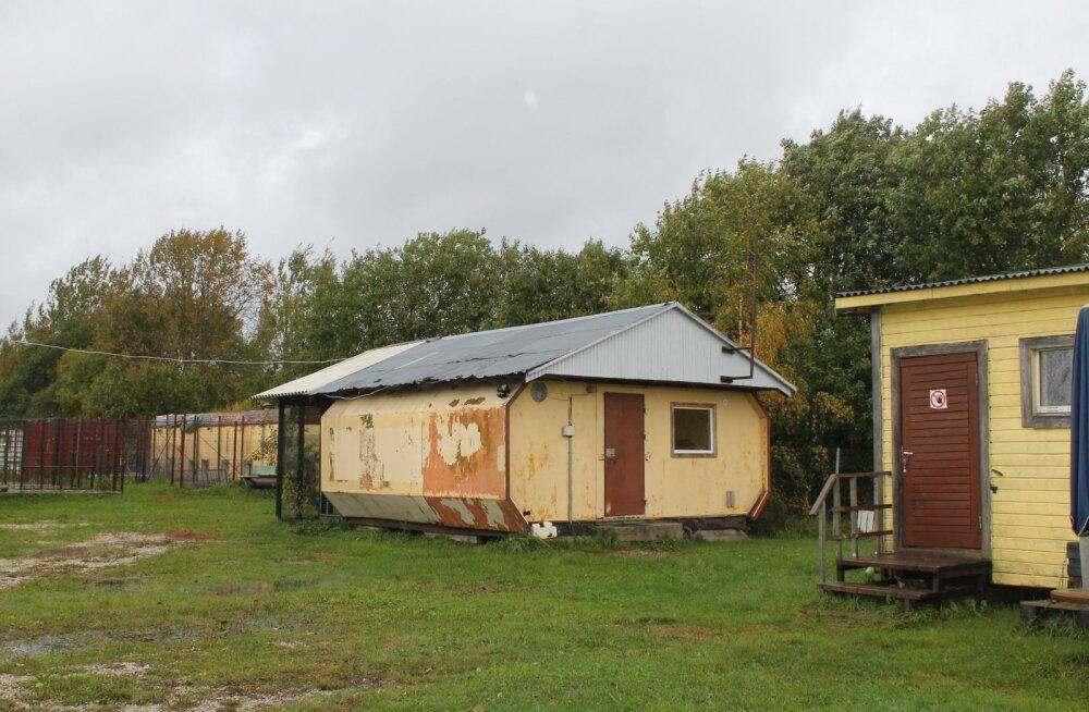 Pärnu varjupaiga tulevik on veel lahtine: 11 soojakut on paigaldatud annetuste toel, mõnda hoiab ainult värv koos, vesi on vaid kolmes