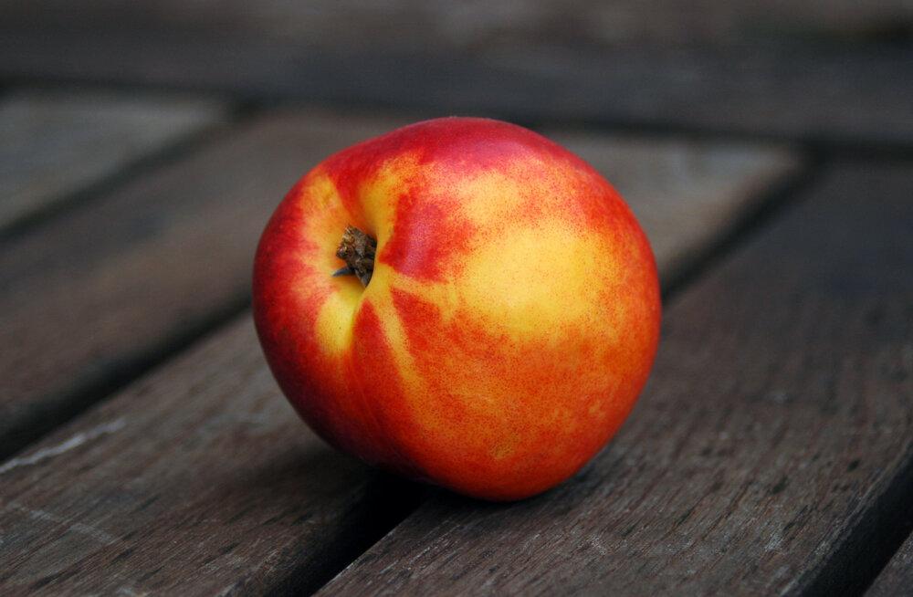 Puu- ja köögiviljad, mida me kõik peaksime augustikuus suure isuga sööma