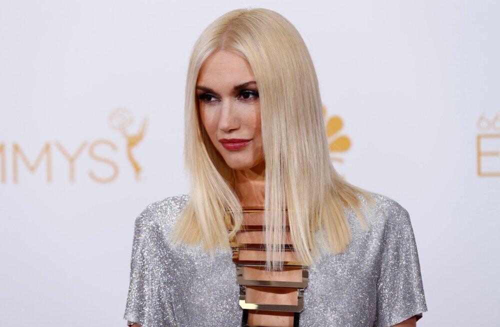 Kas Gwen Stefani tõesti vastutab fänni valusa kehavigastuse eest?