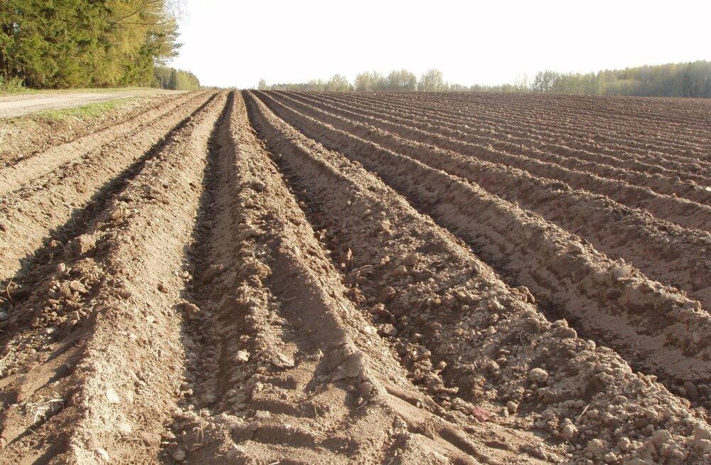 Põllumajandusäpi loonud Eesti idufirma kaasas investoritelt 1,1 miljonit eurot