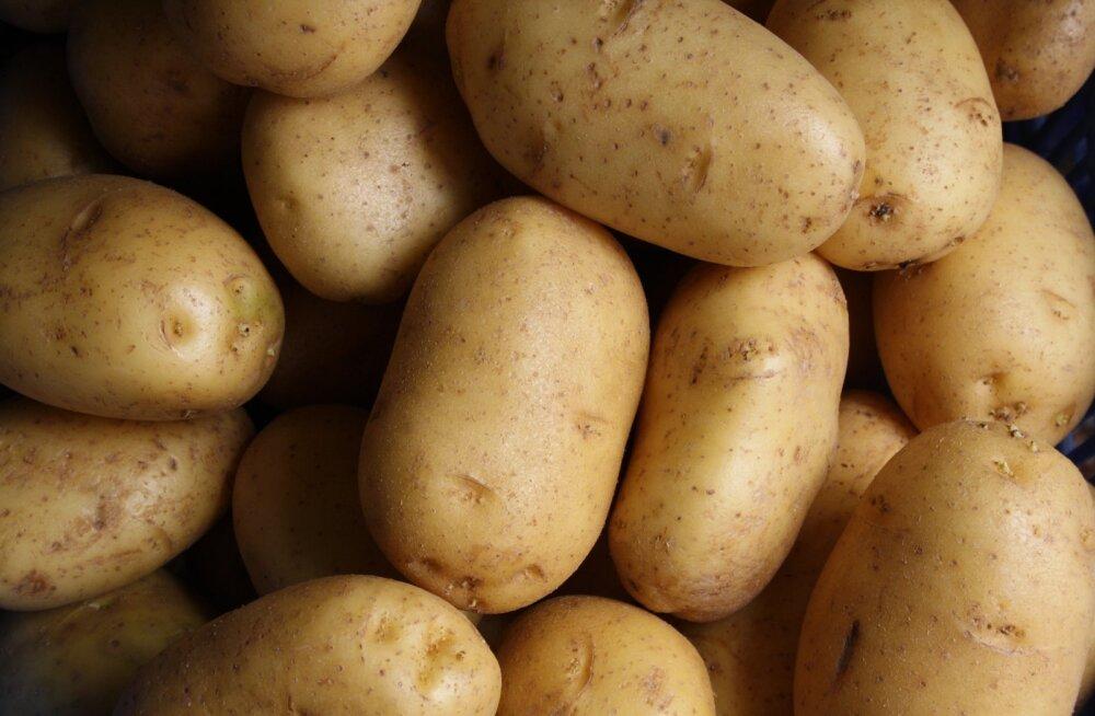 Aastaga topelthind: kartuli pöörane hinnatõus jätkub