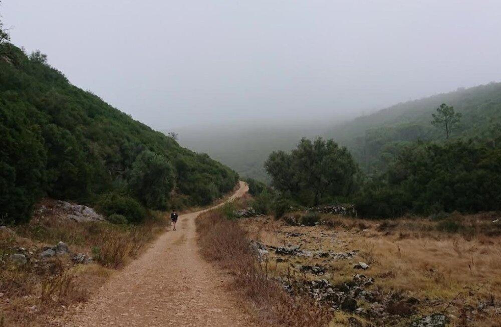 Camino 4