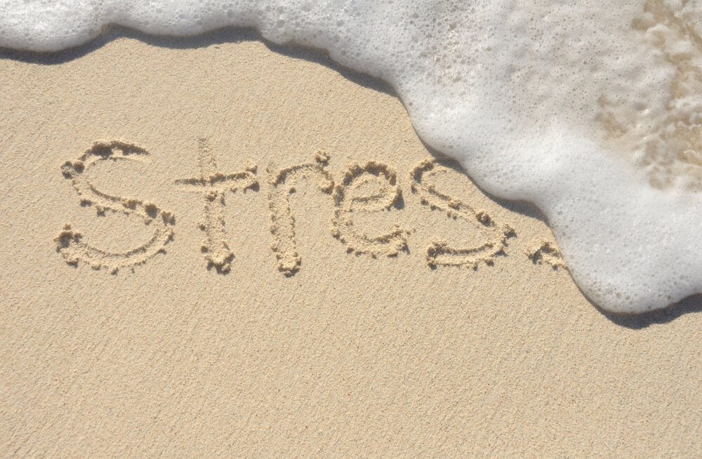 Mida teeb stress sinu kehale ja meelele ning kuidas sellest vabaneda?