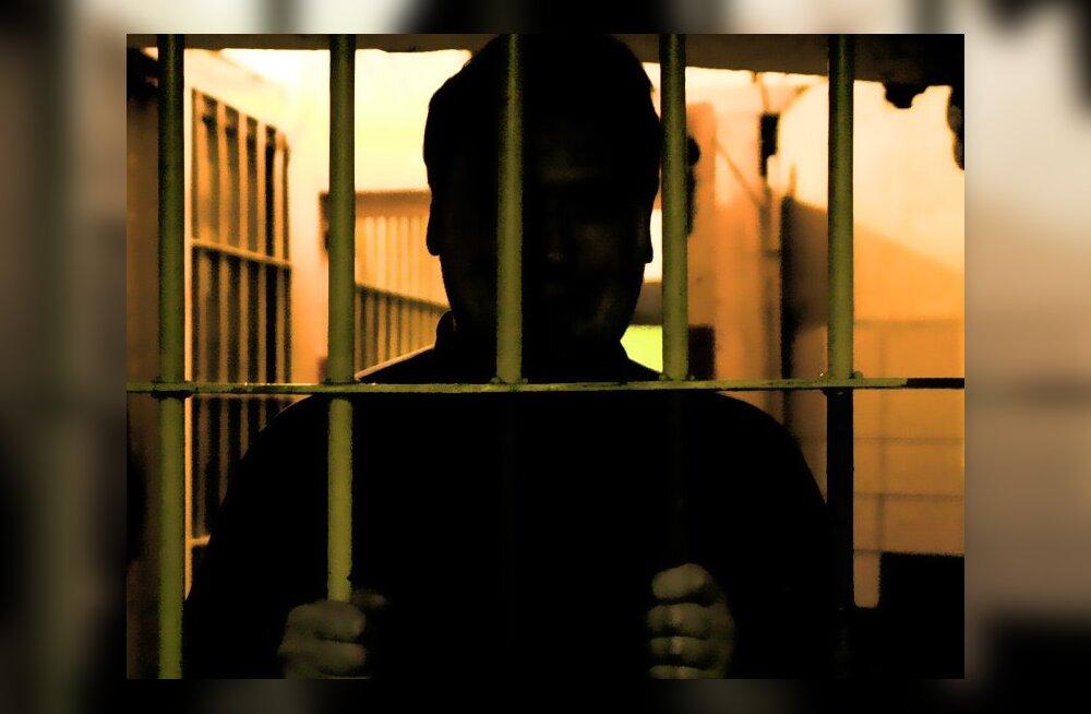 Kohus mõistis pedofiilile reaalse vangistuse