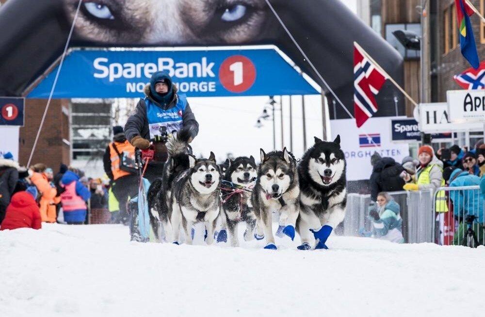 Heinrich Lukk startis Euroopa pikimal kelgukoerte võistlusel teisena. Ülejäänud pea 70 koerarakendit asusid teda peagi tühjal lumisel maal jälitama.
