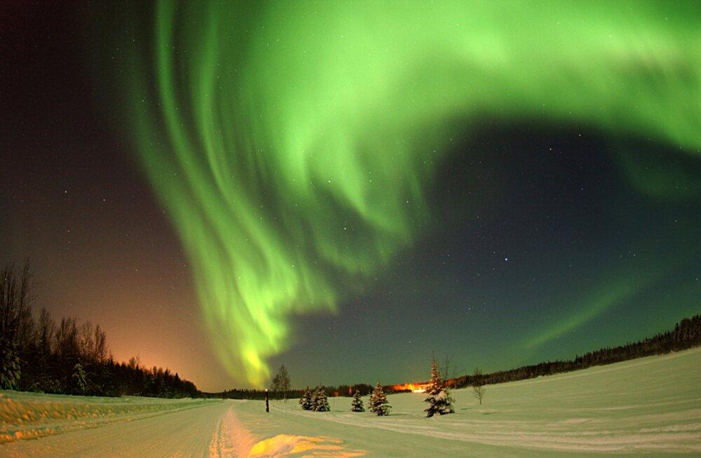 Kes on need hullud, kes Alaskale põgenevad? Eestlanna jagab oma elu ja sealsete sõprade põnevaid lugusid
