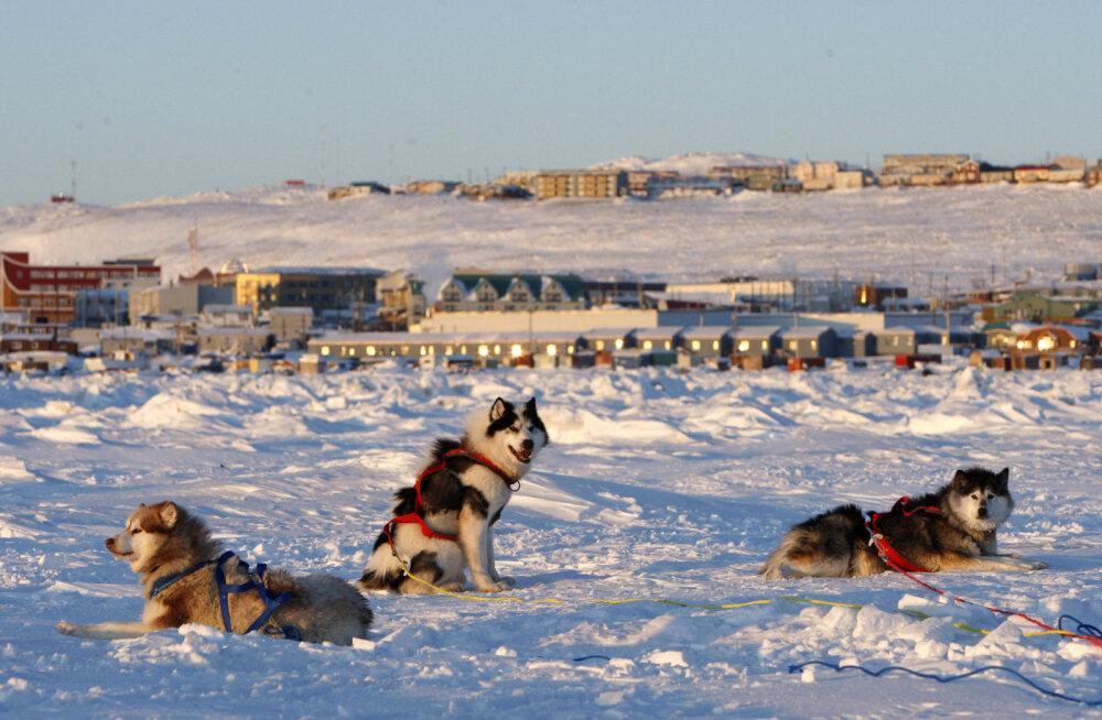 Kanada sõjavägi uurib arktilise väina põhjast tulevat müstilist heli, mis on loomad minema peletanud