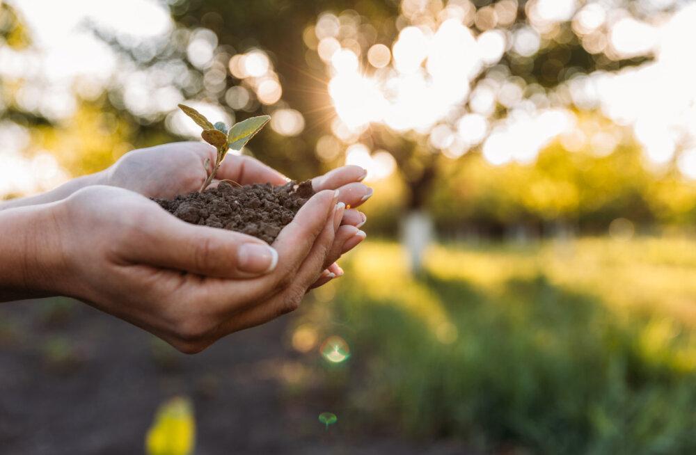Sõnum inimkonnale: meie planeet suudab rahuldada kõikide inimeste vajadusi, aga mitte kõikide inimeste ahnust