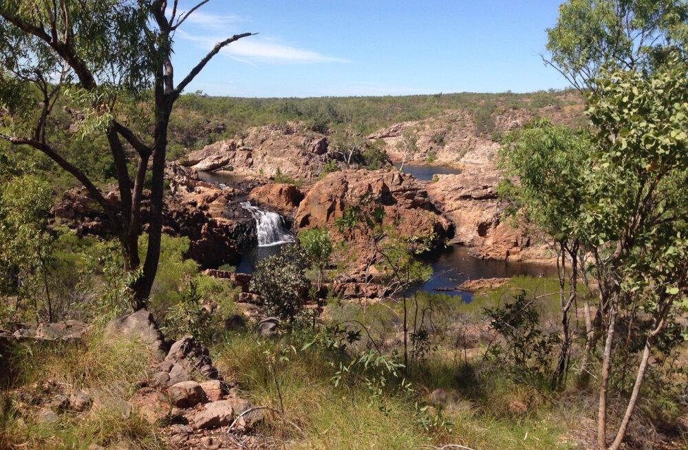 Juristitoolilt rändama ehk seiklus Austraalias 15: dušihoolik matkal