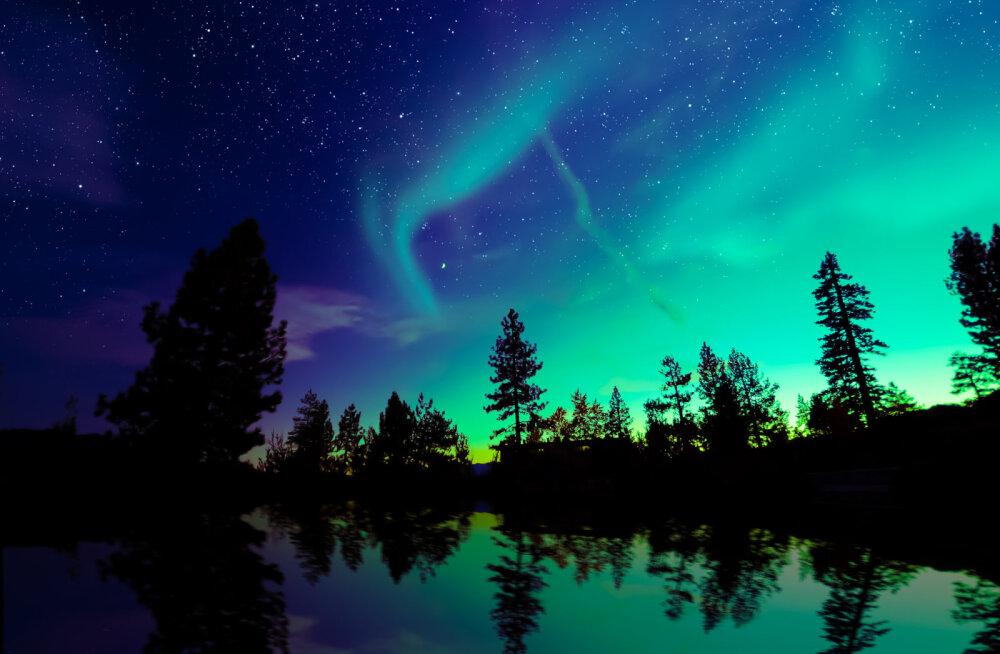Põhjala maagiline maailmavaade avab ukse sinu sisemaailma