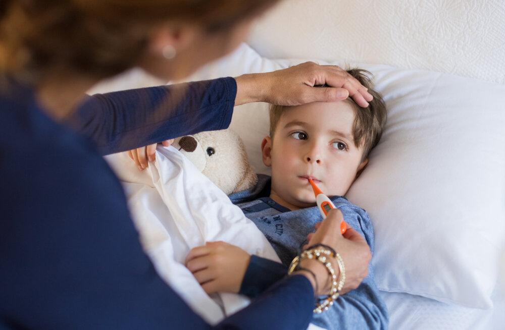Apteekri nipid: kuidas tugevdada koolilaste immuunsüsteemi?