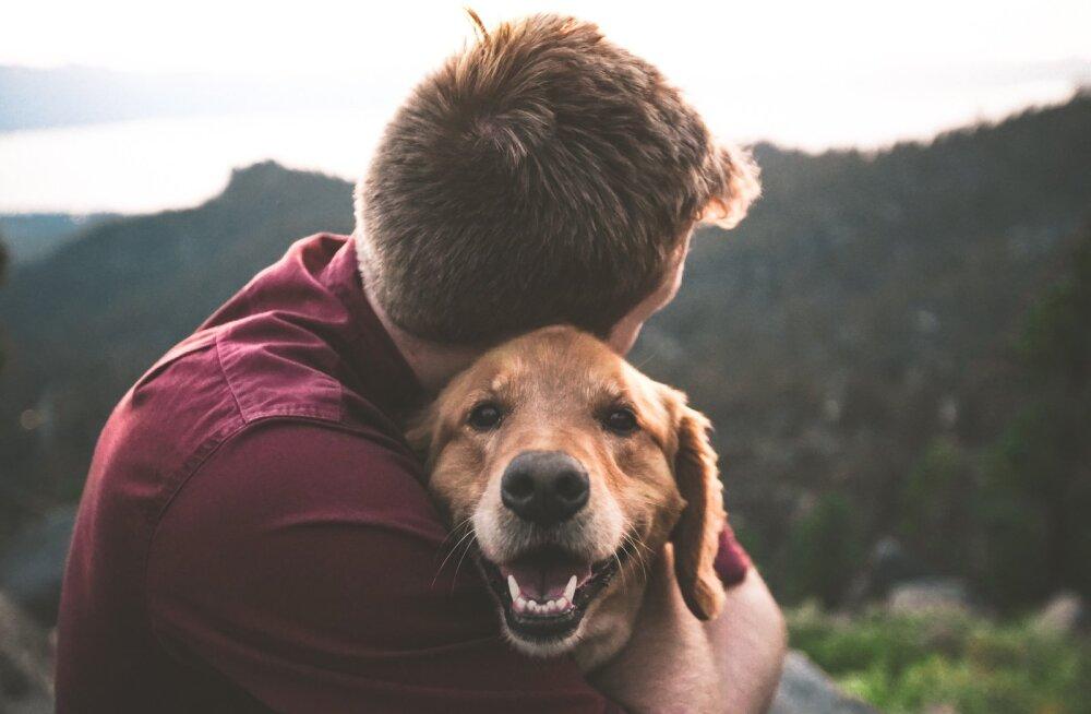 Hämmastav! Kaheksa asja, mida koer sinu kohta tajuda suudab
