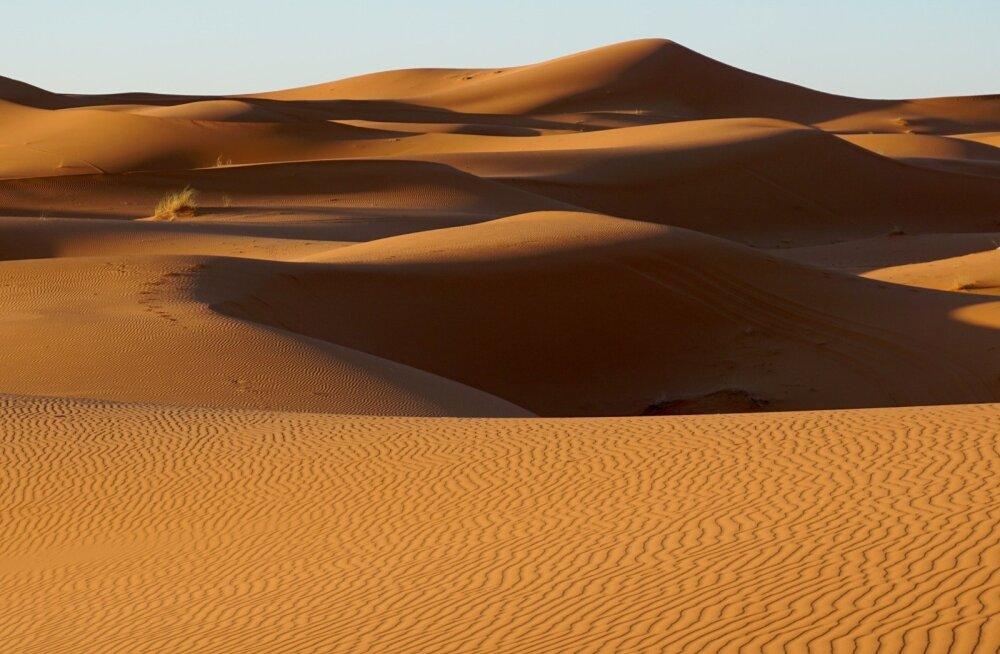 Teadlased: Sahara kõrbe laienemise saab peatada, lahendades samal ajal mitmed inimkonna probleemid