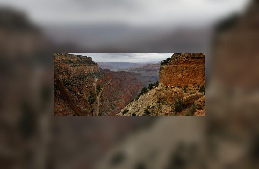 See pole Grand Canyon, see on mu akendest avanev pilt!