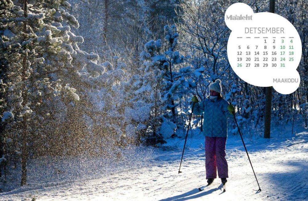 Lae taustaks kaunis Maaleht.ee kalender