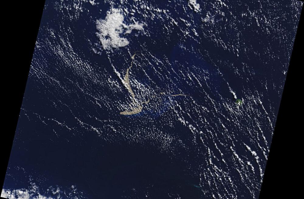 Austraalia poole triivib pimsisaar, mis võib Suure Vallrahu päästa