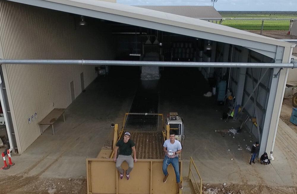 Andro (22) ja Kristo (22) püstitasid Auscotti puuvillatehases rekordi ühe vahetuse jooksul suurima arvu villapallide tootmises.