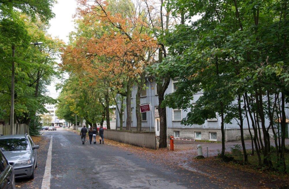 Vesivärava tänav